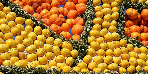 Menton fête citron